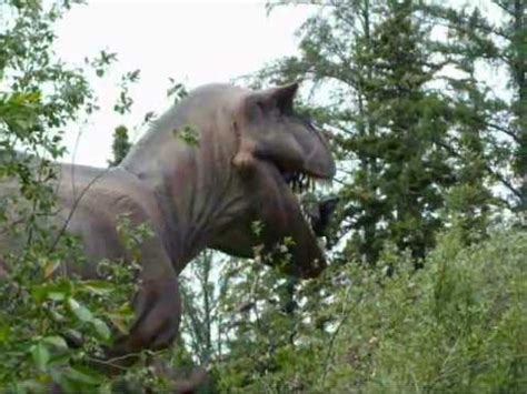 REAL  DINOSAURS!   YouTube