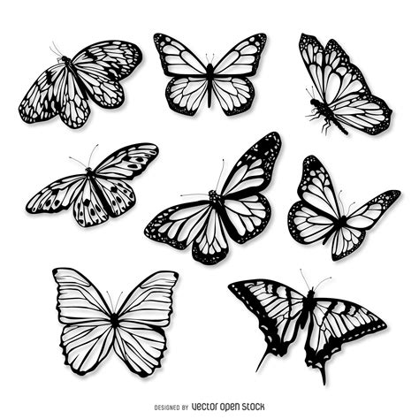 Realistic butterfly illustration set - Vector download