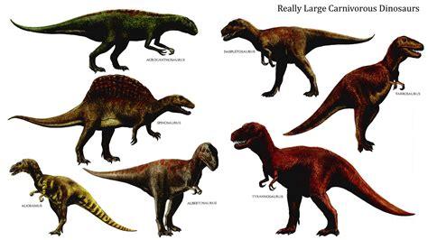 Really Large Carnivorous Dinosaurs   Carnivore Dinosaurs