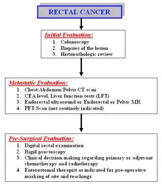 Rectal Cancer: Practice Essentials, Background, Anatomy
