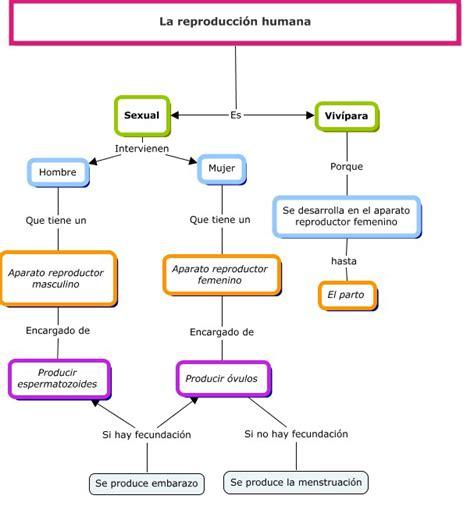 RECURSOS EDUCATIVOS EN LA ENSEÑANZA PRIMARIA: LA ...