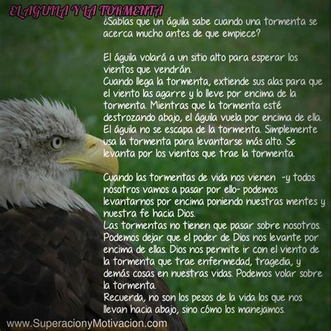 Reflexiones de Superación; El Aguila y La Tormenta ...