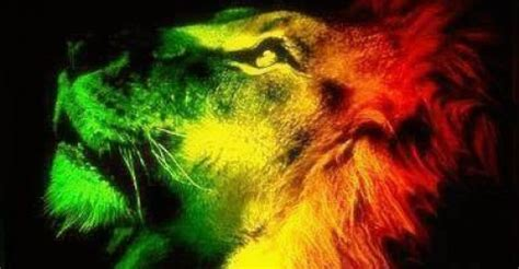 Reggae culture | About reggae music, artists, history, news..
