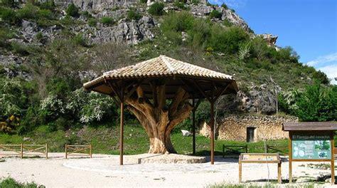 Reinventar el turismo rural: la interesante propuesta de ...