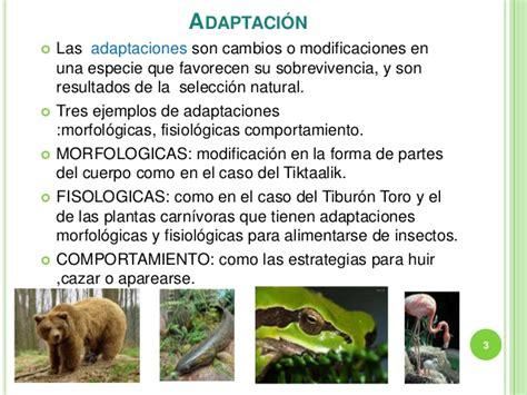 Relacion entre la adaptacion y la sobrevivencia