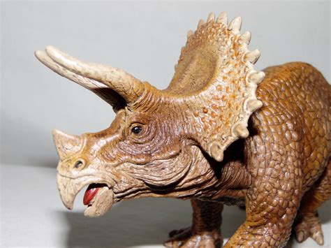 Related Keywords & Suggestions for schleich triceratops