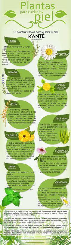 Remedios para los GASES. Tratamiento natural para los ...