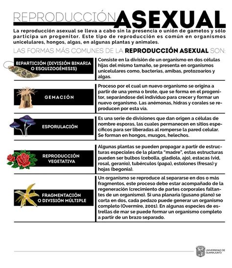 Reproducción asexual – Repositorio de Objetos de ...