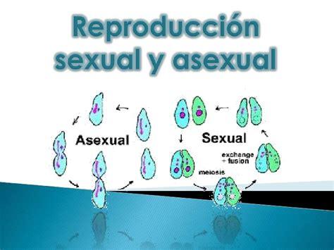 Reproducción sexual y asexual proyecto