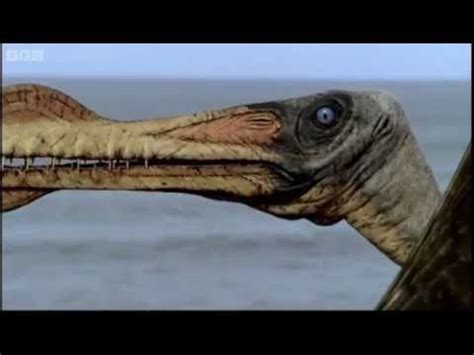 Reptiles of the Skies   Walking with Dinosaurs in HQ   BBC ...