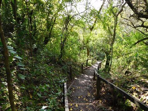 Reserva Natural Otamendi (Campana, Argentina): UPDATED ...