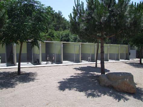 Residencia canina Barcelona