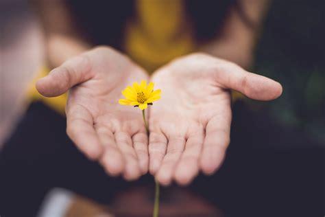 Resiliencia: El arte de aprender a vivir ¿Qué es y cómo ...