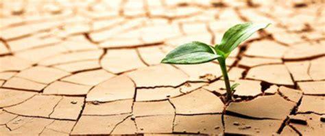 Resiliencia | IPACITEFO