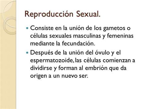 Resultado de imagen para reproduccion sexual humana ...