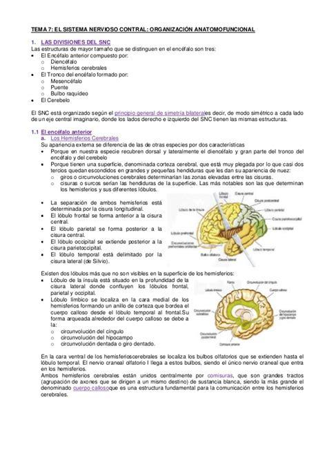 Resumen Psicobiología Tema 7 (UNED)