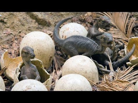 Revelan!! «EMBRIONES DE DINOSAURIOS» En ¡¡Huevos De 70 ...