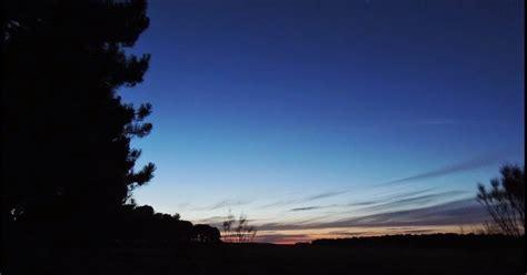Ría de Ribadeo: Observando y escuchando aves nocturnas en ...