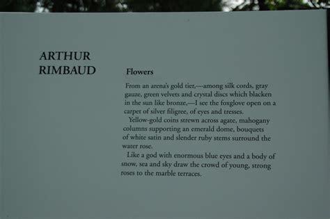 Rimbaud | From the Garret