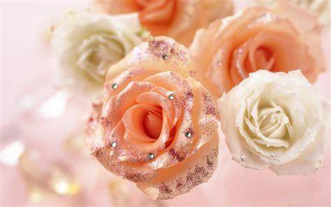 Romantic Roses   Roses Wallpaper  13966426    Fanpop