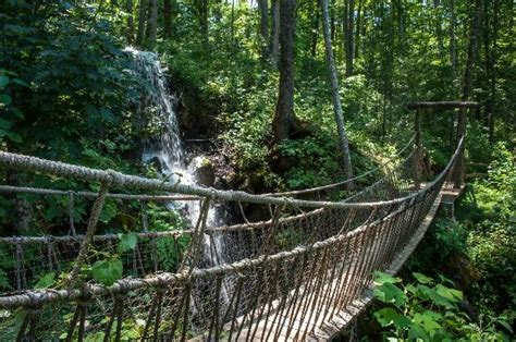 Rope bridge over waterfalls   Picture of Foxfire Mountain ...
