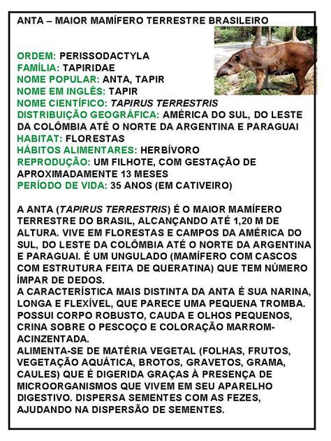 Rosearts  Atividades para imprimir: Animais do pantanal ...