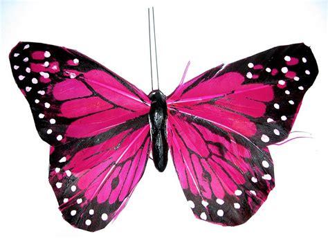 roze vlinder afbeeldingen, roze vlinder plaatjes en foto's ...