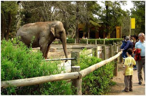 Rumbo Familiar   Visita al Zoológico de Córdoba.