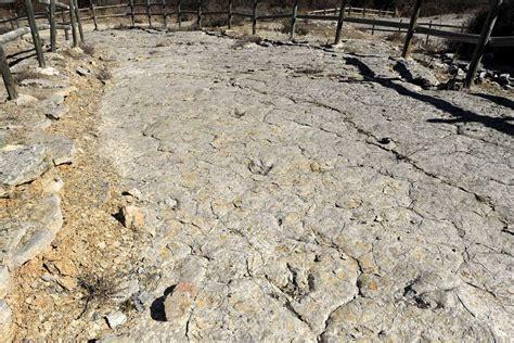 Ruta de los dinosaurios por Soria  1/2    elnortedecastilla.es
