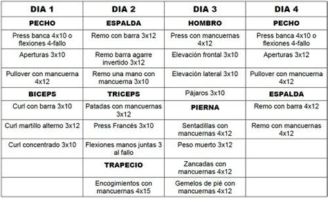 Rutina casera ~ MUSCULACION PARA PRINCIPIANTES | Ejercicio ...