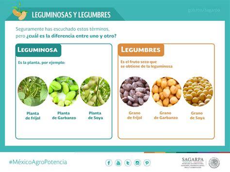 SAGARPA México on Twitter: