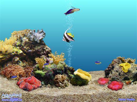 Salva pantalla de peces tropicales movibles - Imagui