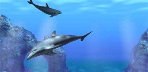 Salvapantallas con escenas acuáticas - Mil Recursos