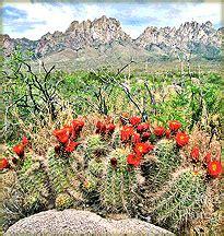 Santa Fe New Mexico Visitors Vacation Guide & Business ...
