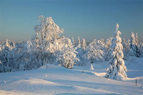 Scenery & Spring Pictures: Beautiful Snow Scenery Pictures