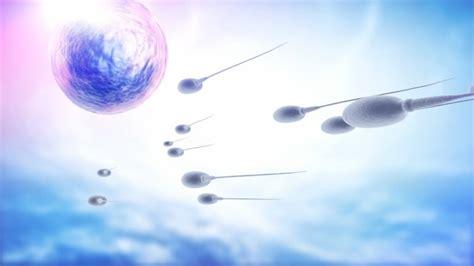 Se Puede Quedar Embarazada Recien Terminada La Regla