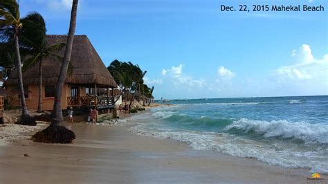 Seaweed in Playa Del Carmen – Nothing to Beach About Here!