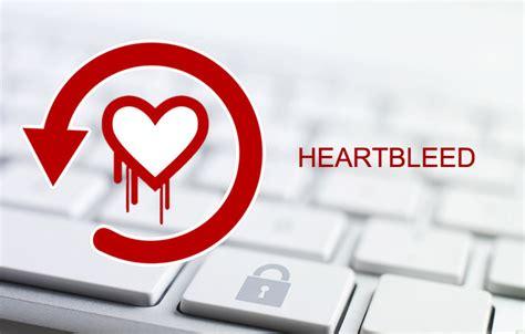 Seguridad informática / Qué es Heartbleed, como afecta a ...