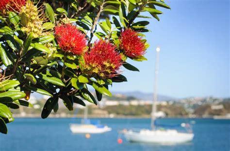 Semana de Vacaciones en Menorca   BuscoUnChollo.com