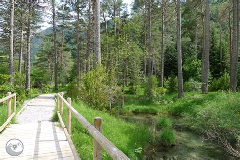 Sendero accesible del Cornato en el valle de Pineta ...