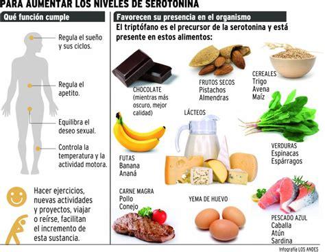Serotonina En El Cerebro Related Keywords - Serotonina En ...