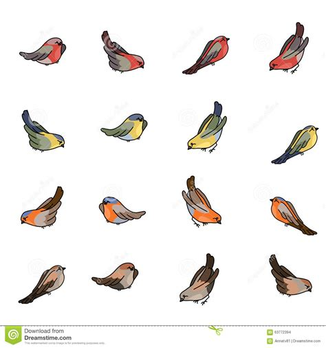 Set With Different Small Birds - Bullfinch, Tit, Robin And ...