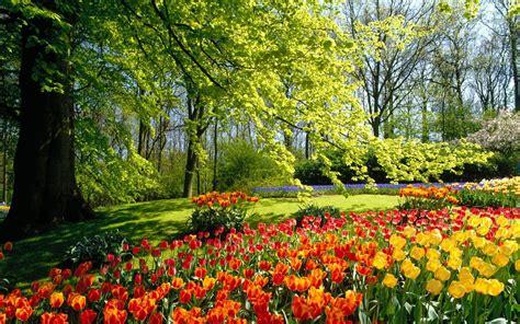 Sfondi desktop primavera Immagini | Paesaggi | Galleria ...