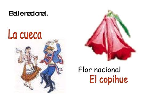 Simbolos patrios chilenos copihue - Imagui