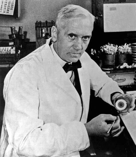 Sir Alexander Fleming s blob of mould set to SELL for £6k ...