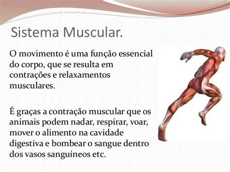 Sistema muscular e esquelético