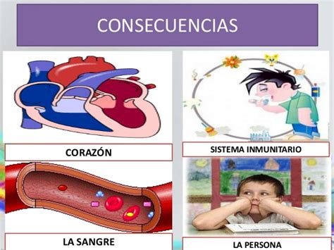 Sistema Muscular Para Ninos | newhairstylesformen2014.com