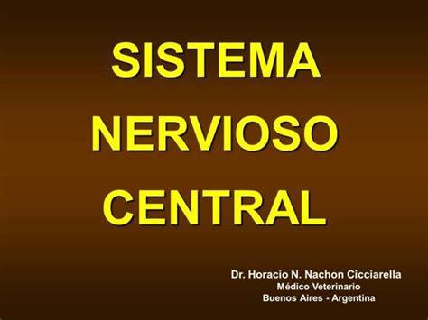 SISTEMA NERVIOSO CENTRAL  authorSTREAM