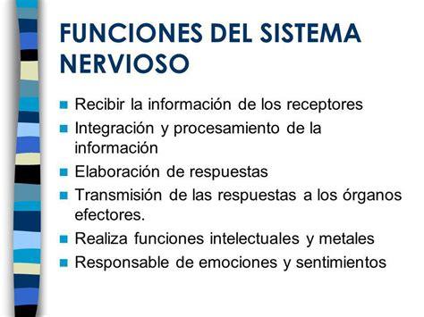 SISTEMA NERVIOSO Y ENDOCRINO - ppt video online descargar