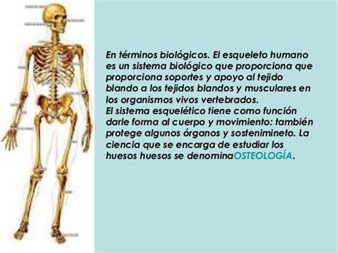 sistema oseo, muscular, y articulaciones